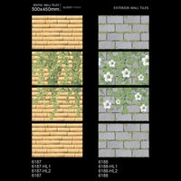 Elevation wall tiles 300x450MM