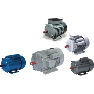 Oswal Squirrel  Cage Induction Motor