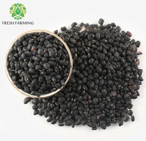 Kashmiri Black Beans