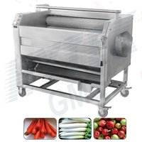Ginger Washing And Peeling Machine