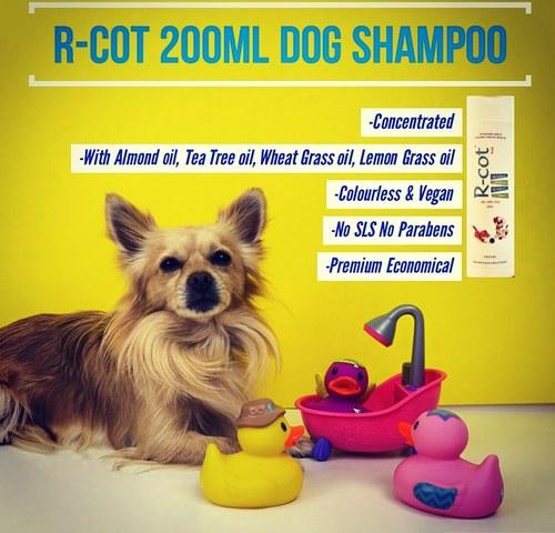 R-Cot Dog Shampoo