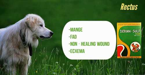 Dog and Cat Skin Disease Cream