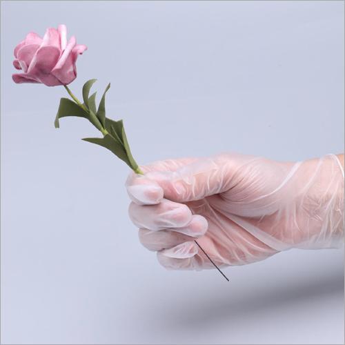 Disposable PVC Examination Gloves