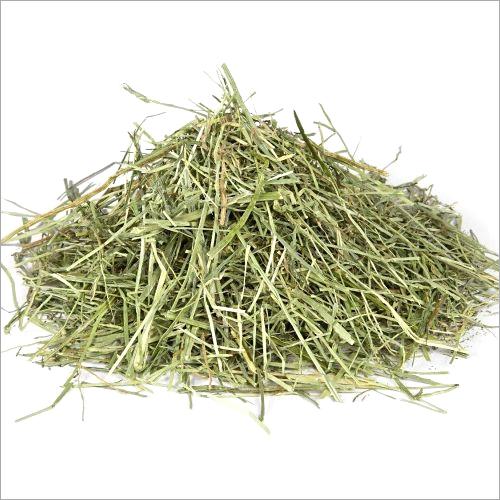 Ray Grass