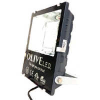 Electra DFS Medium LED Flood Light
