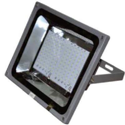 Electra Medium LED Flood Light