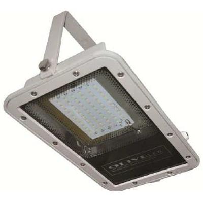 BLOL-40-60 LED Flood Light