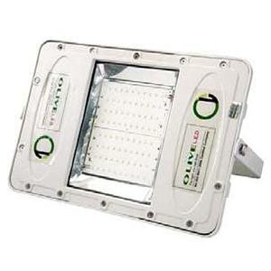 BLOL-50-100 LED Flood Light