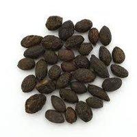 Saw Palmetto oil 85% (Lipidic)