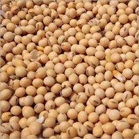 Soyabean Seeds
