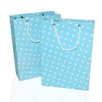 Stylish Paper Bag