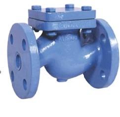 Cast Iron Check valves (NRV)