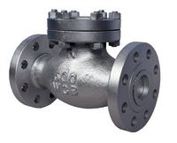 Cast Steel Check valves (NRV)