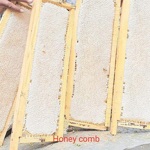 Multi Flora Raw Honeycomb for Natural Honey