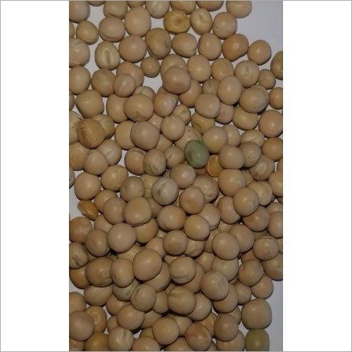 Organic White Pea Beans