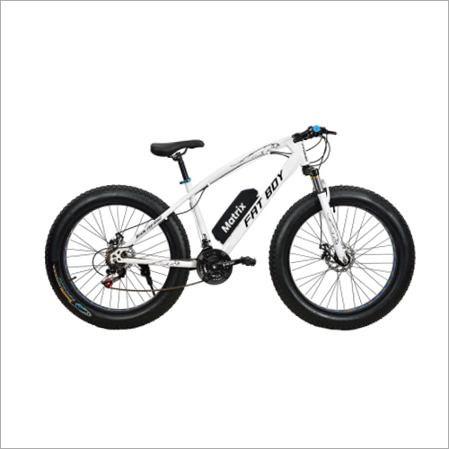 350W E-Cycle With Battery
