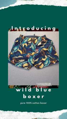 Wild Blue Boxer