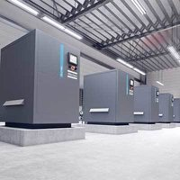 ZL VSD Oil Free Lobe Blowers