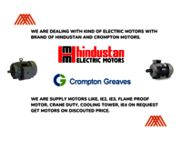 HINDUSTAN ELECTRIC MOTOR IE2