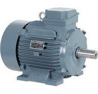 Crane Duty Electric Motor