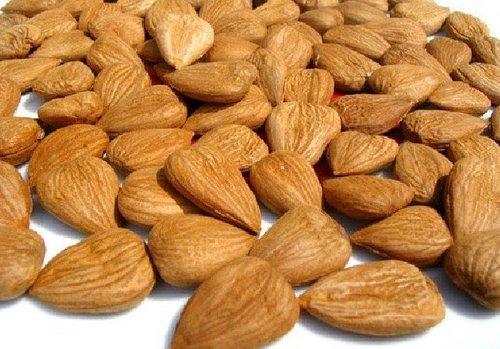 Bitter Almond