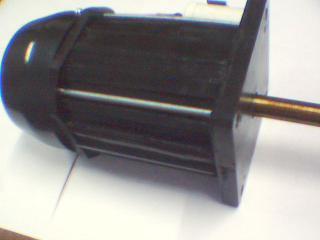 vertical ac motor