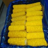 Frozen Corn On COB