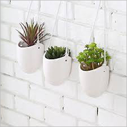 Hanging Ceramic Plants