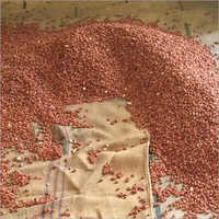 Groundnut Seeds Cleaning Process