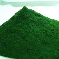 Chlorella Salina Extract