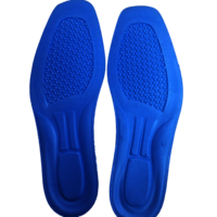 Shoe Foot bed