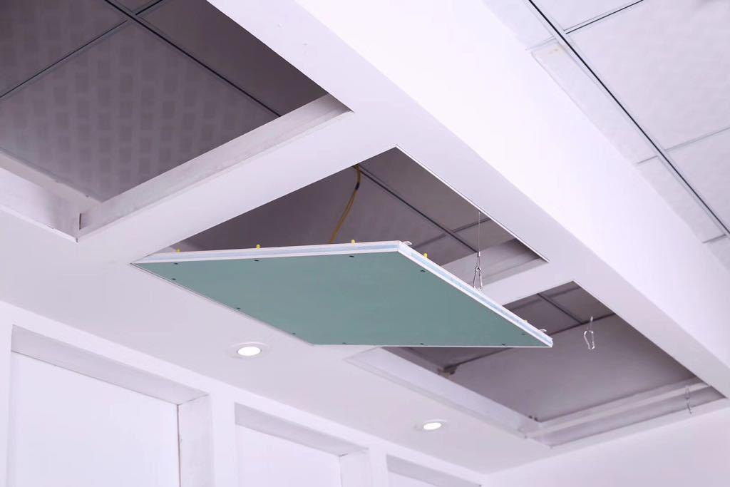 Trap Door Access Panel