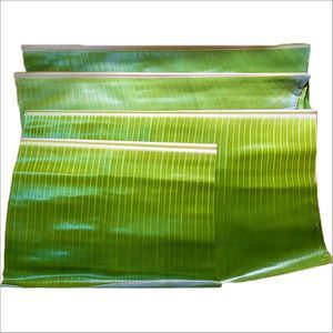Fresh Banana Leaf for Tiffin, Lunch and Dinner