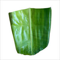 Tiffin Banana Leaf