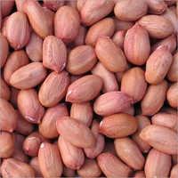 Spanish Peanut