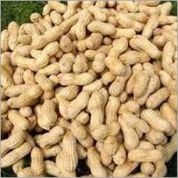 Shelled Ground Nuts