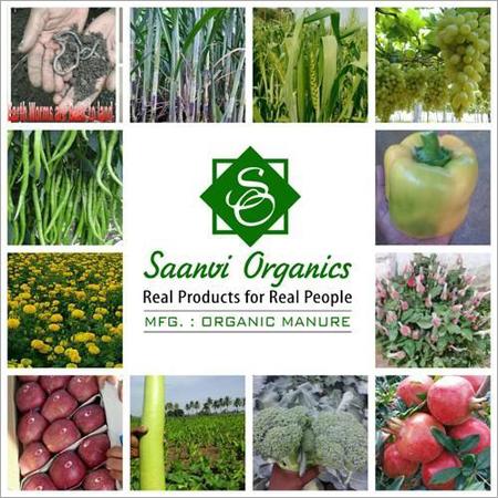 Bio Organic Liquid Fertilizer