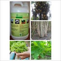 Hydroponic Fertilizer