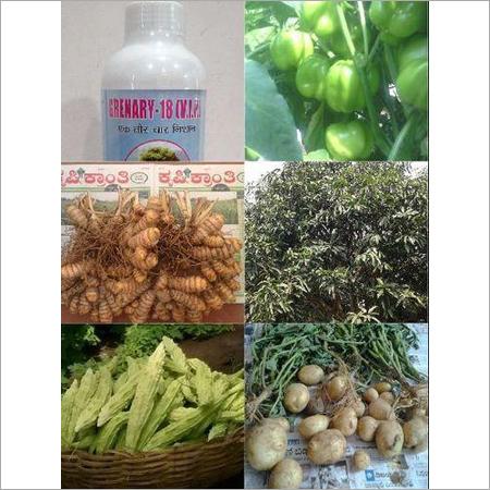 Organic Micronutrient Fertilizers for Plant Gro
