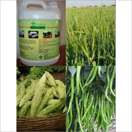 Green House Organic Fertilizer