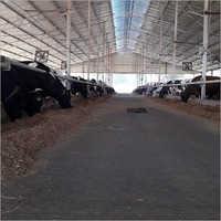 Dairy Farm Consultants