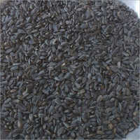 Sunflower Oil Seeds And Bird Feeding Seeds