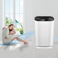 Air Purifier DM-02