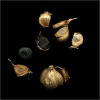 Fermented Black Garlic
