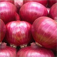 Nashik Onion