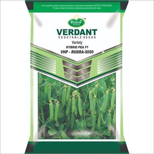 Hybrid Pea F1 Seeds