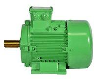 IE4 Electric Motor