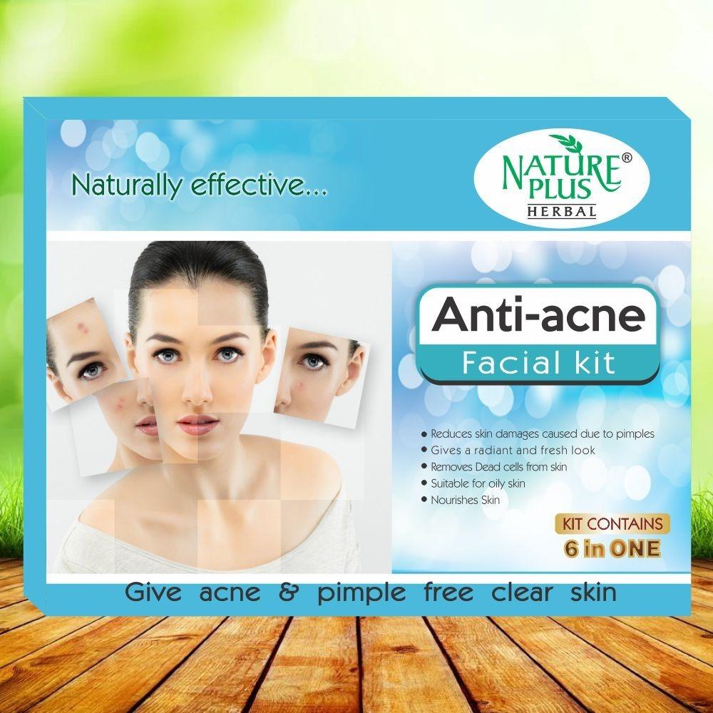 Nature Plus Herbal Anti-acne Facial Kit, 370gm