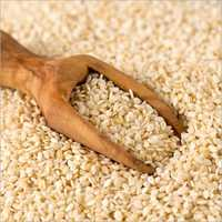 Harvested Sesame Seeds