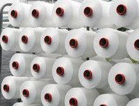 Polyester ITY and BSY Yarn